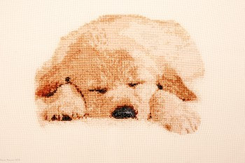 Cross Stitch Embroidery picture of a sleeping doggy for framing