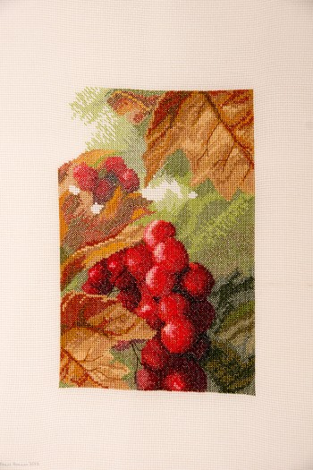 Cross Stitch Embroidery picture of red berries for framing