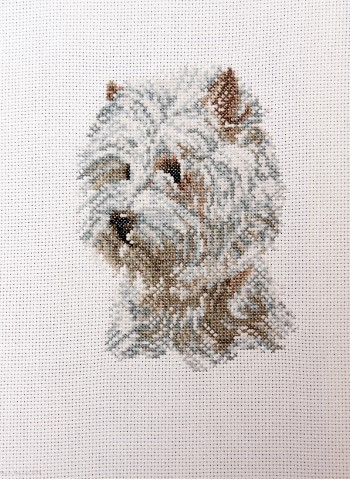 Cross Stitch Embroidery picture of a Westie for framing